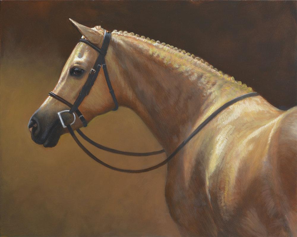 "Palomino Pony   20""x16"" oil"