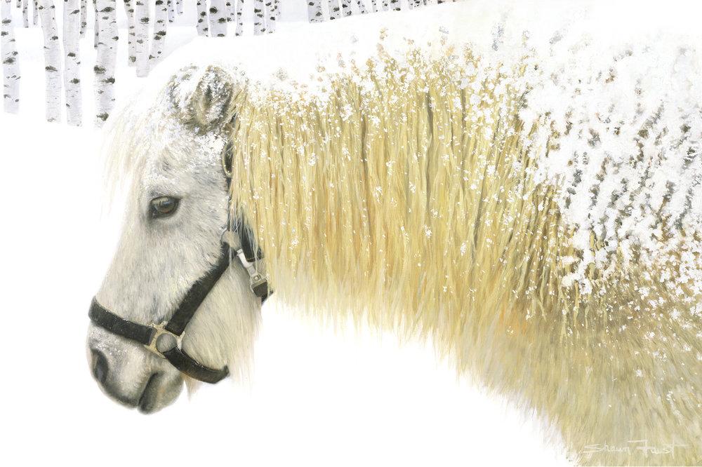 """Pony -n- Birches   36""""x24"""" oil"""
