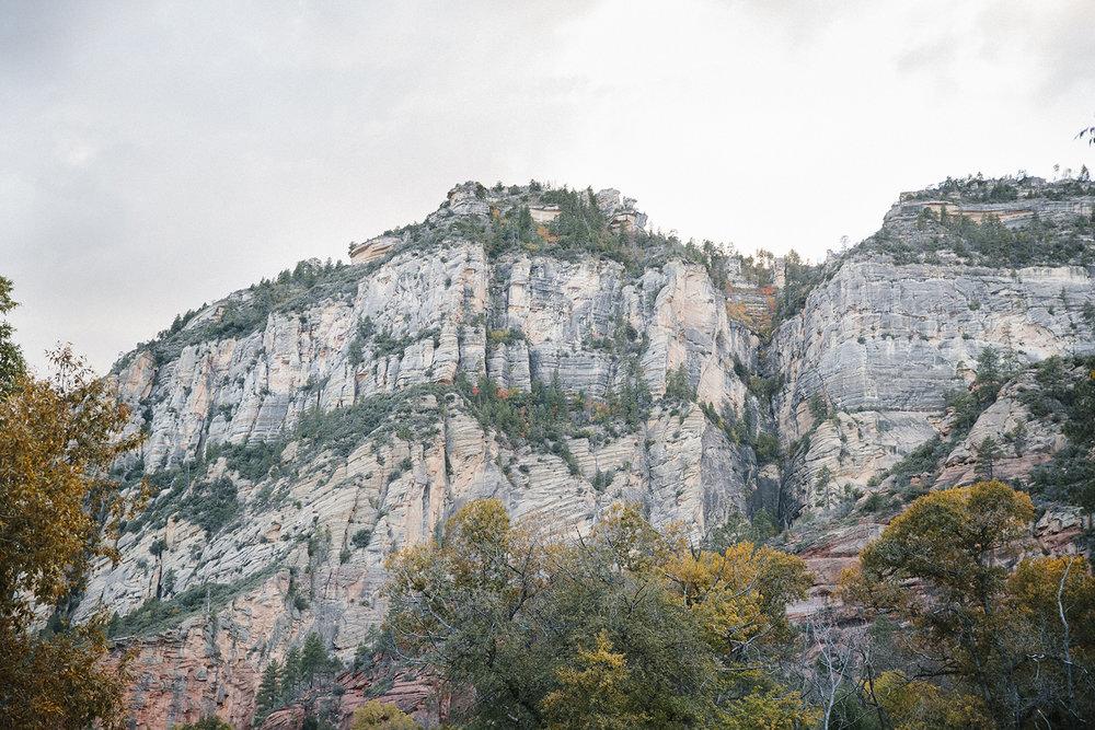 Sedona-Foliage-1.jpg