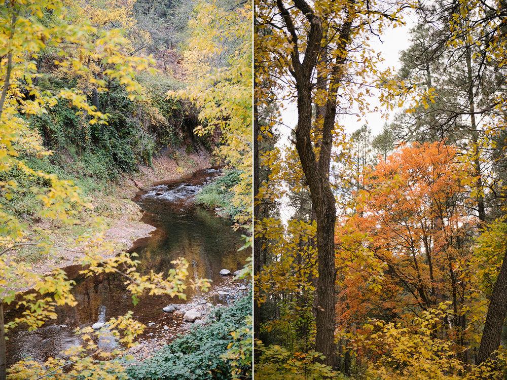 Sedona-Fall-Colors-2.jpg