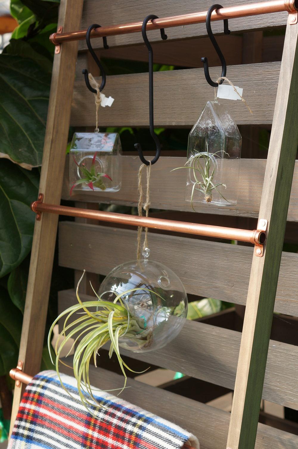 plant blanket ladder