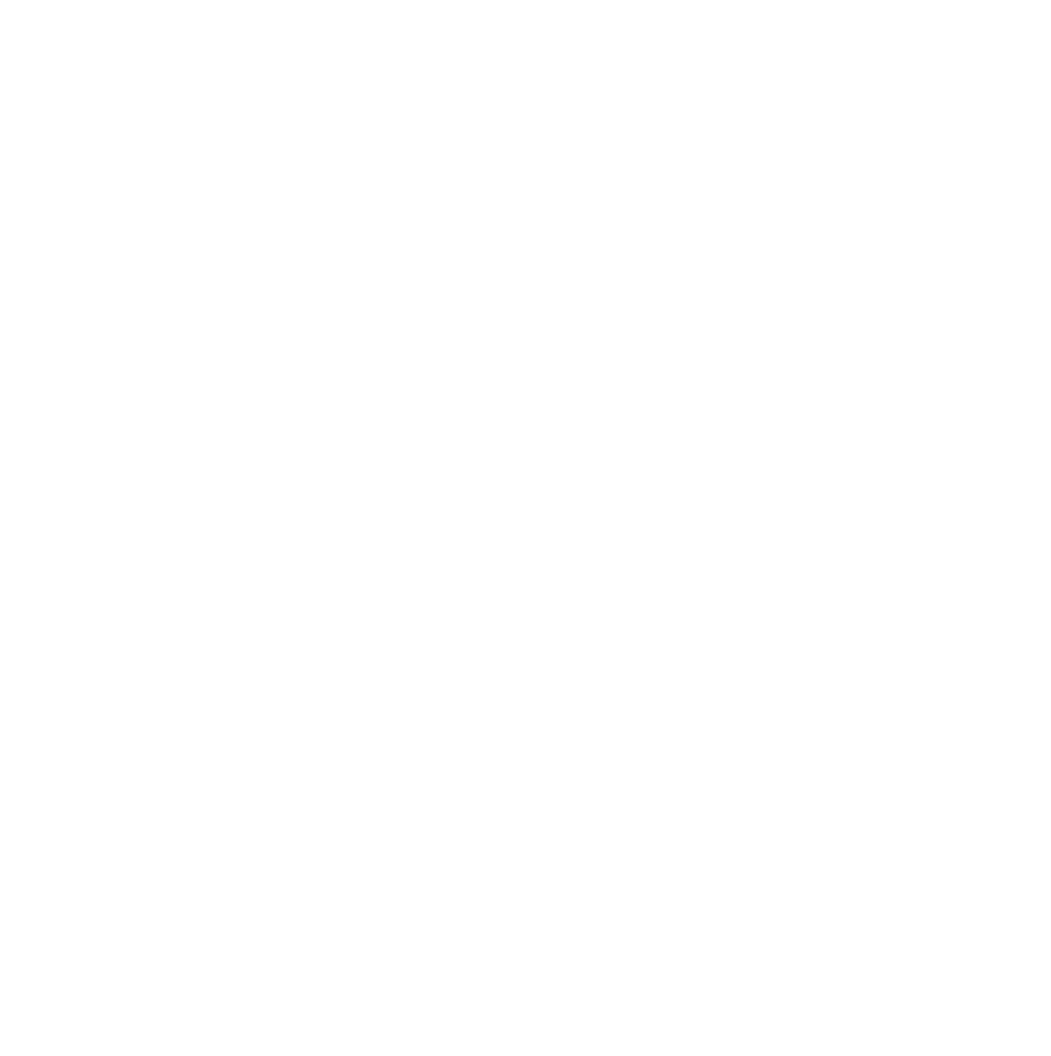 The Hoxton Pony