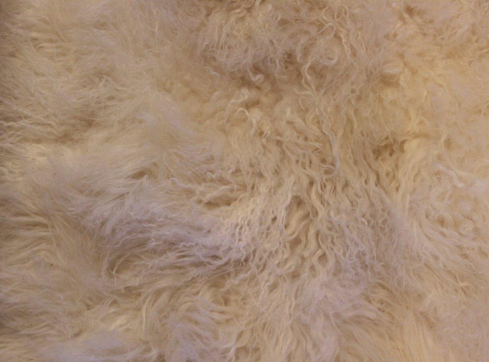fur rug.jpg