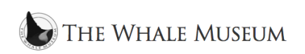 The Whale Museum.png