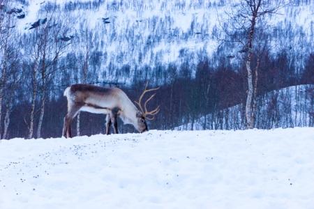 Photo credit - Warren Sammut on Unsplash.com