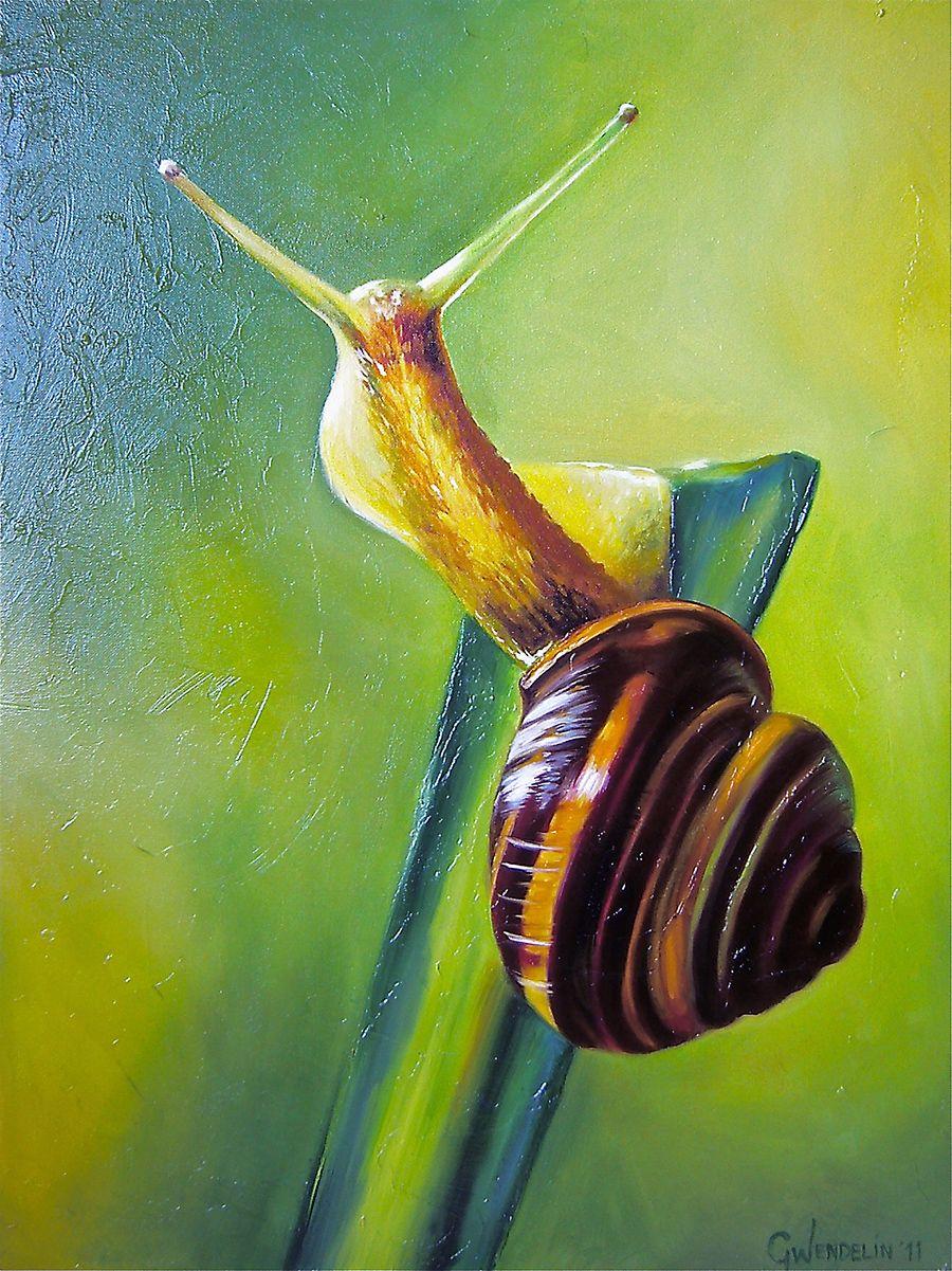 Snail_oil_painting_genevieve_wendelin.jpg