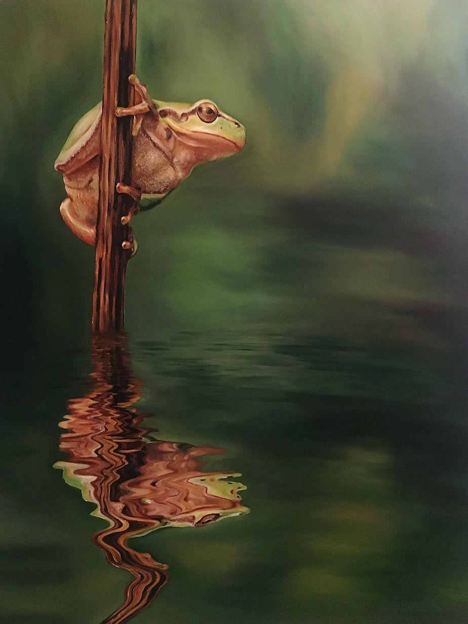 Oilpainting_Frog_by_Genevieve_Wendelin.jpg