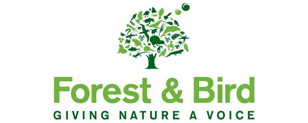 Forest & Bird.jpg