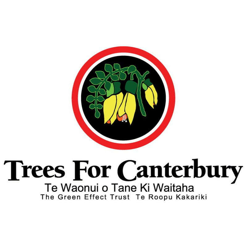 About - Trees for Canterbury is a Not-for-profit Community organisation.Our mission is as follows:Employ; establishing a sense of involvement in the community for disadvantaged people (physically, intellectually, socially and at risk youth) and providing an environment of acceptance as well as support and training for self-development – instilling self-esteem and work habit.Educate; working with educational institutions, providing assistance in the teaching of environmental awareness.Regenerate; cultivating native plants for community planting's and our own revegetation projects using plant material eco-sourced from local areas.