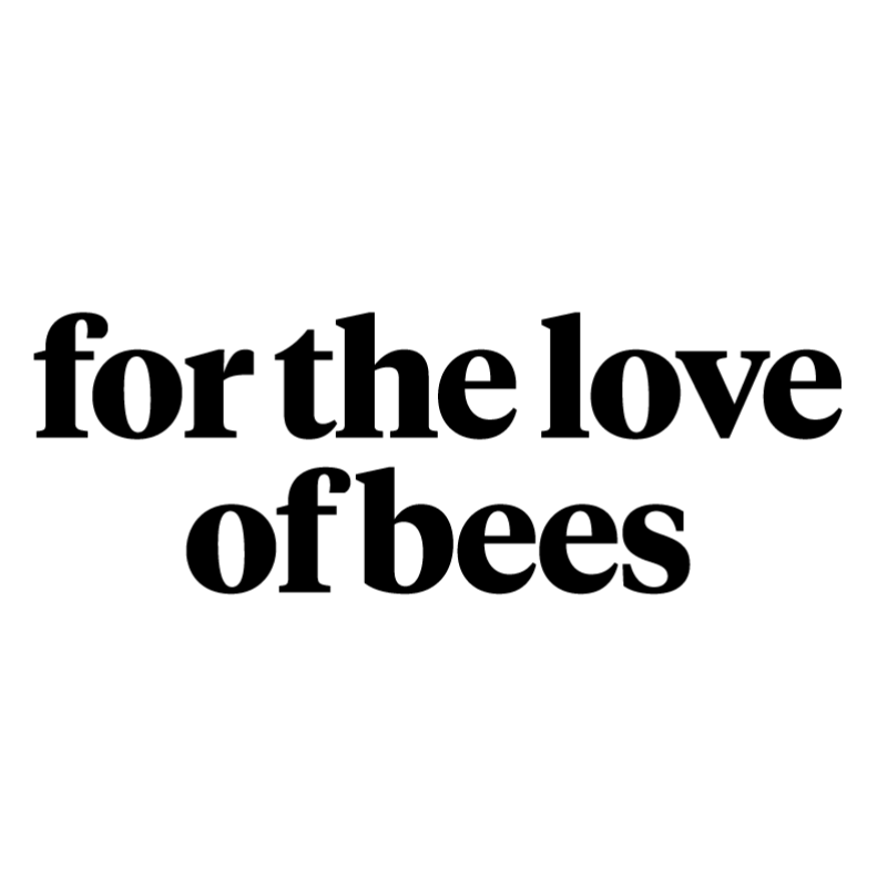 About - For the Love of Bees is a social sculpture that invites people to imagine their city as the safest city in the world for bees, and then to skill-up with us to make it a reality!