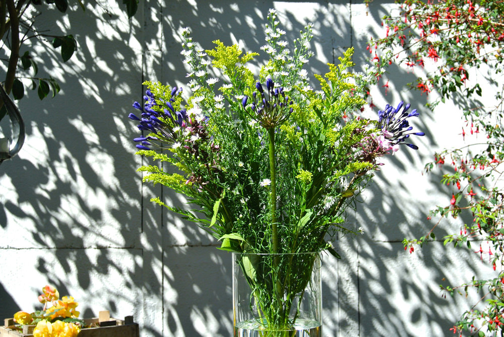 Freddie's Flowers Bunch.jpg