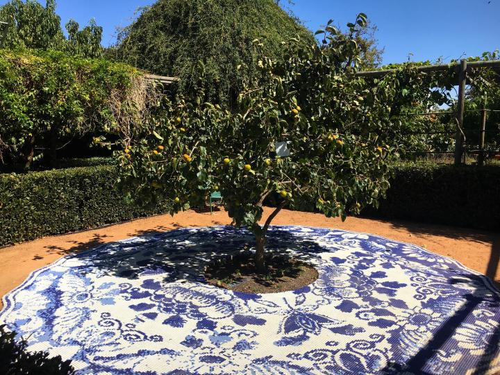 Babylonstoren Garden Tiles.jpg