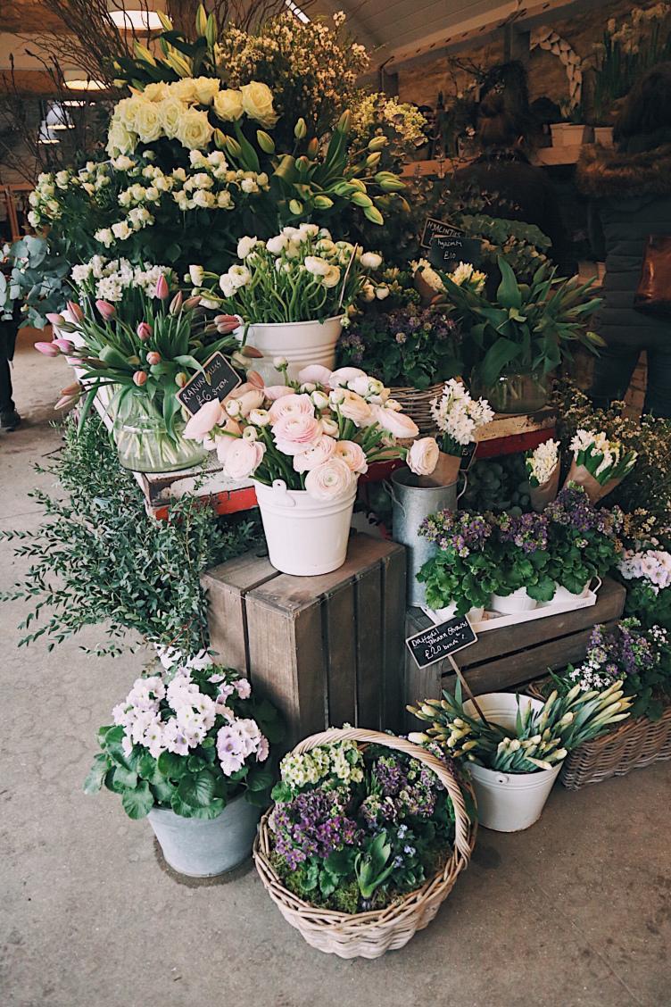 Daylesford Flower.jpg