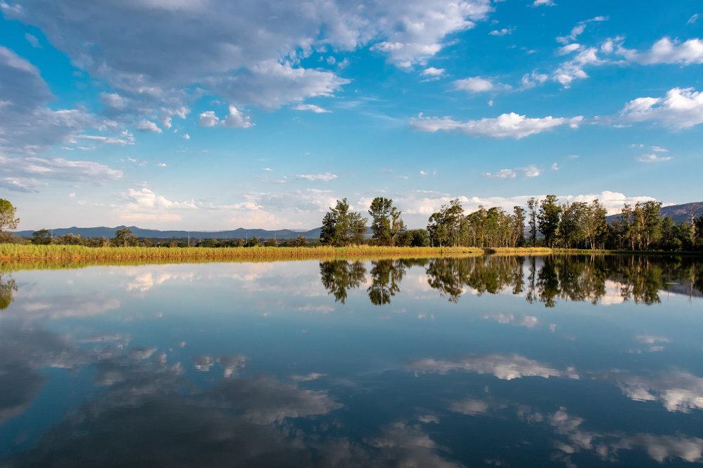 Samantha Gibb Photography Rustenberg Lake.jpg