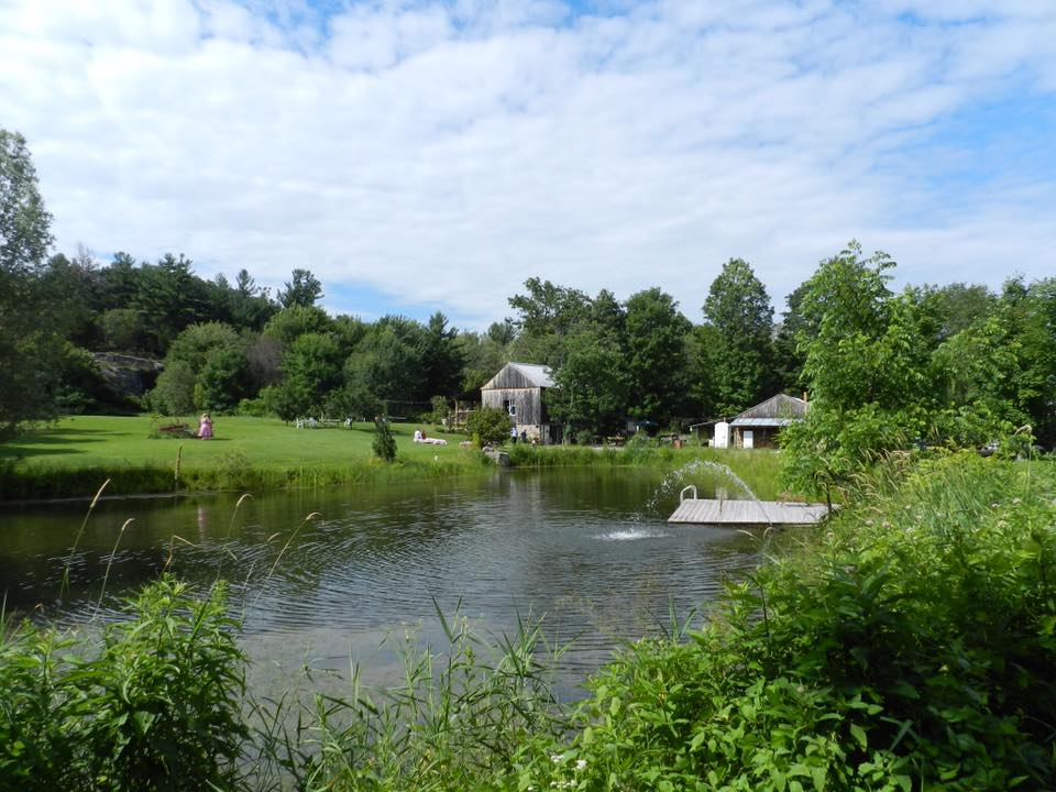 Barn - from the pond.jpg