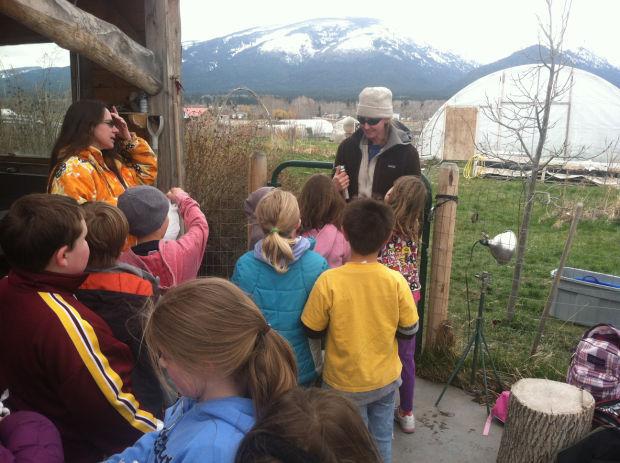 A day at the farm: Grantsdale students tour Homestead Organics Farm - April 28, 2013Ravalli Republic: by David Erickson