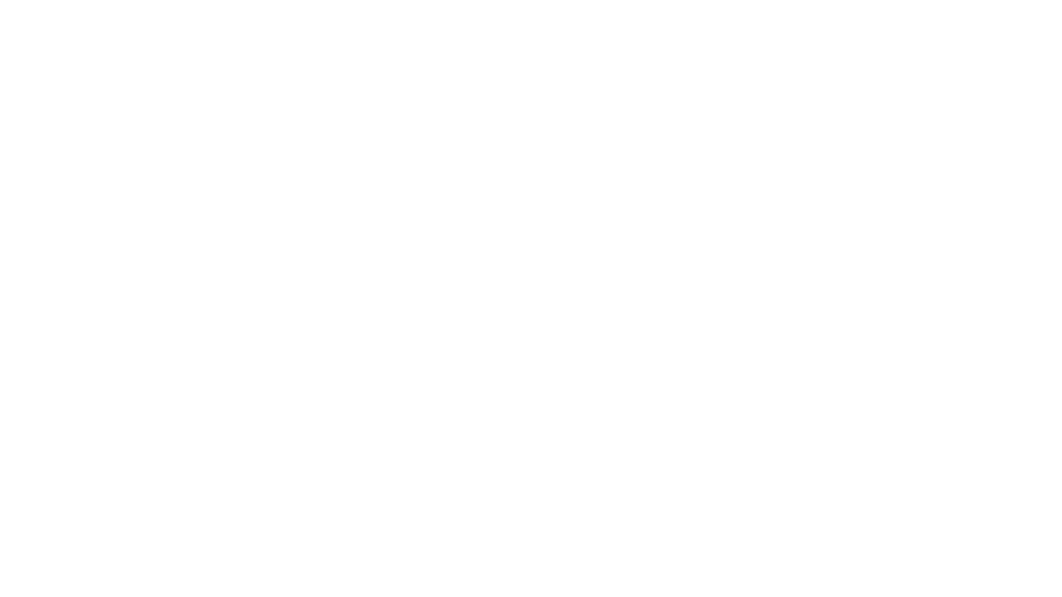 chicca photography