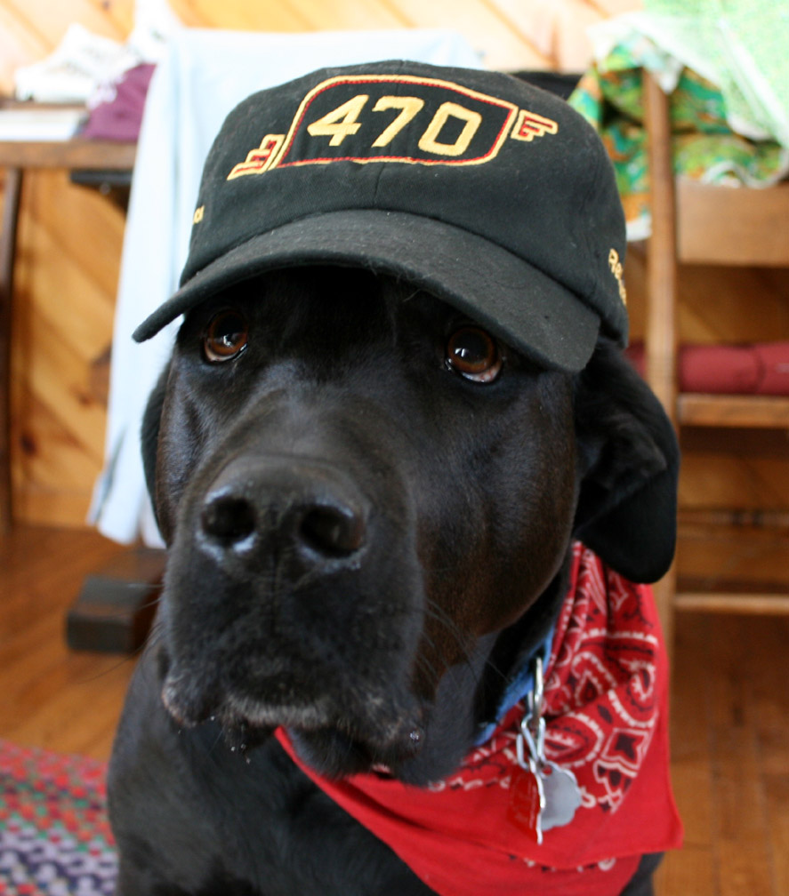 2015-03-19_Steam Dog 2015-03-19_470 Hat 004.jpg