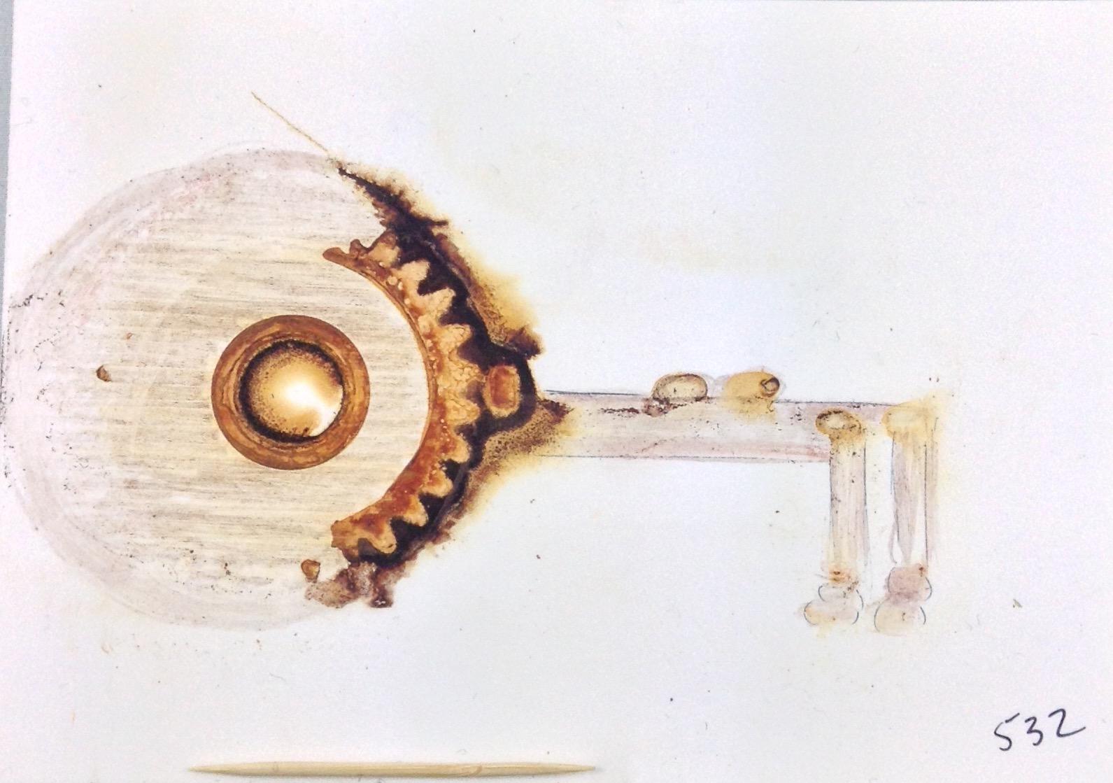 Key 532