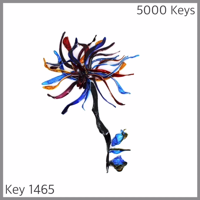 Key 1465 - 1.JPG
