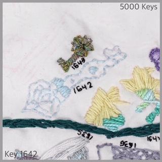 Key 1642 - 1.JPG