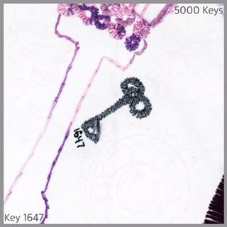 Key 1647 - 1.JPG