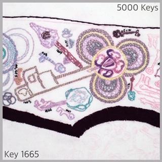 Key 1665 - 1.JPG