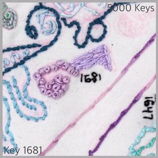 Key 1681 - 1.JPG