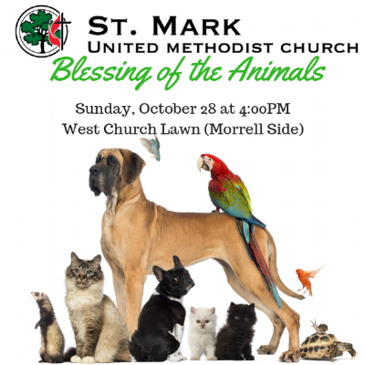 St. Mark UMC Blessing of the Animals.png