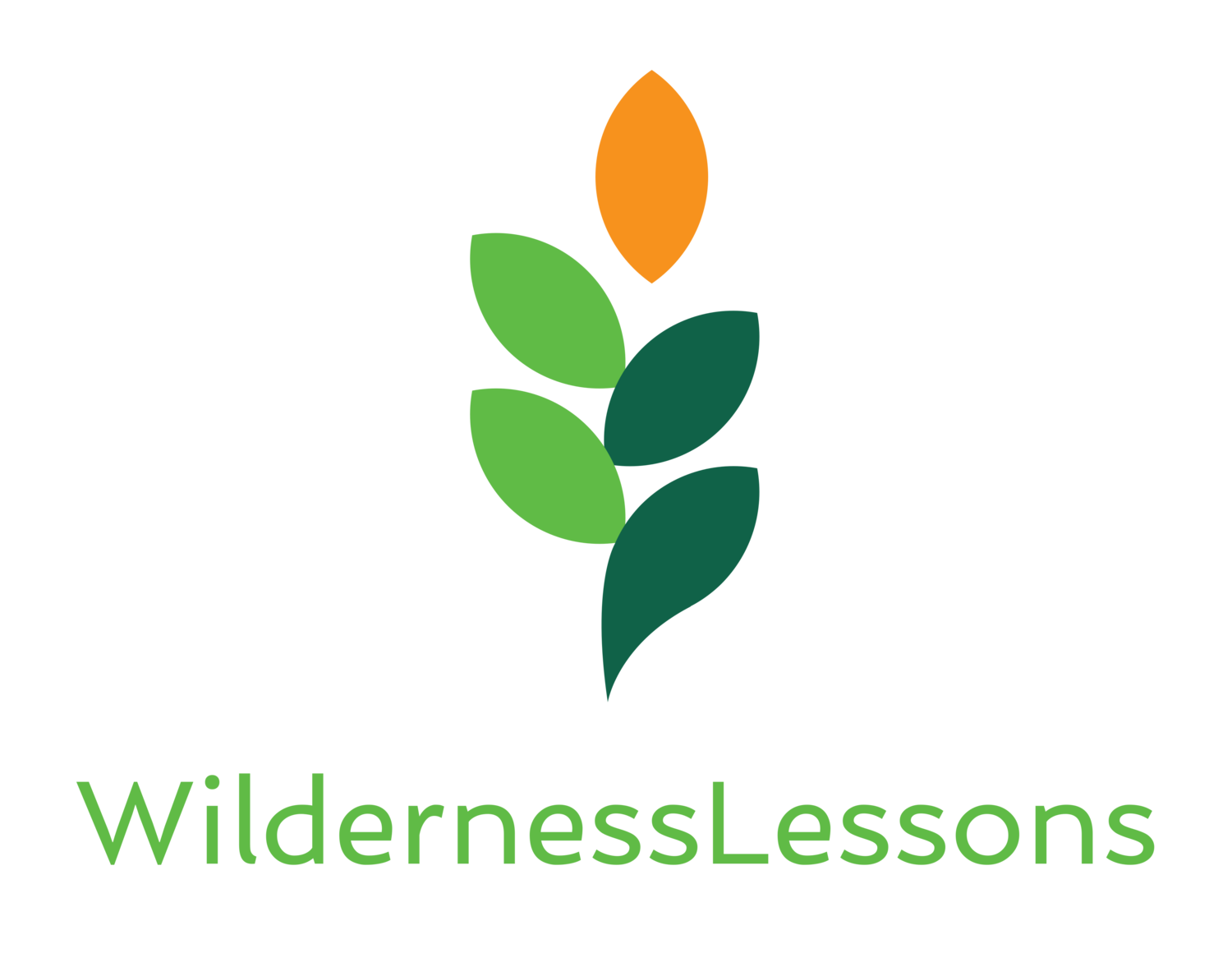 WildernessLessons