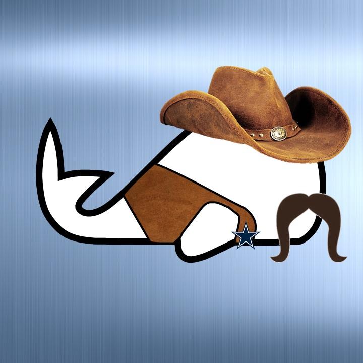 WW_NFL_Logo_DAL.jpg
