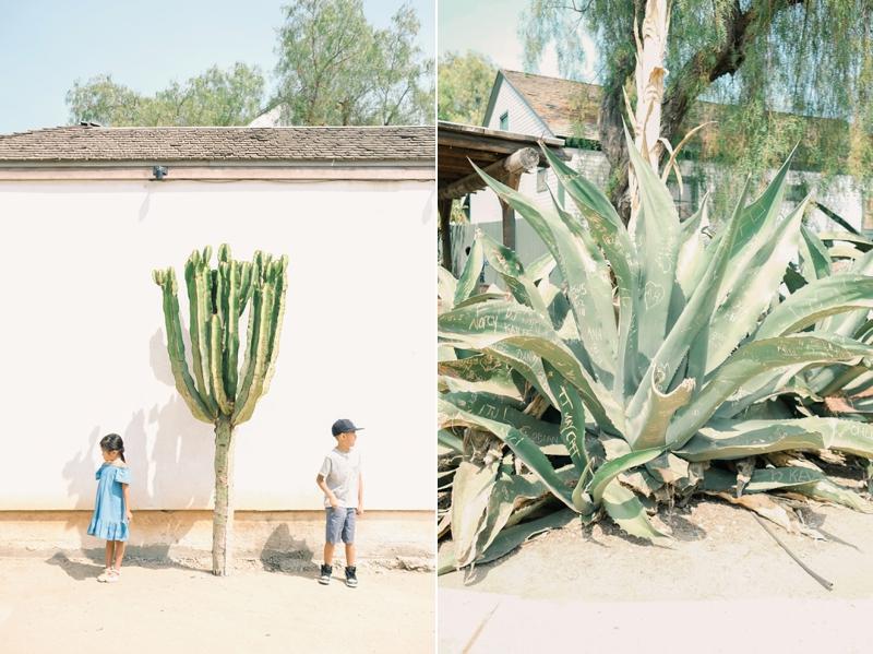 iFloyd_Photography_Fine_Art_Family_Vacation_Photo_San_Diego_0003.jpg