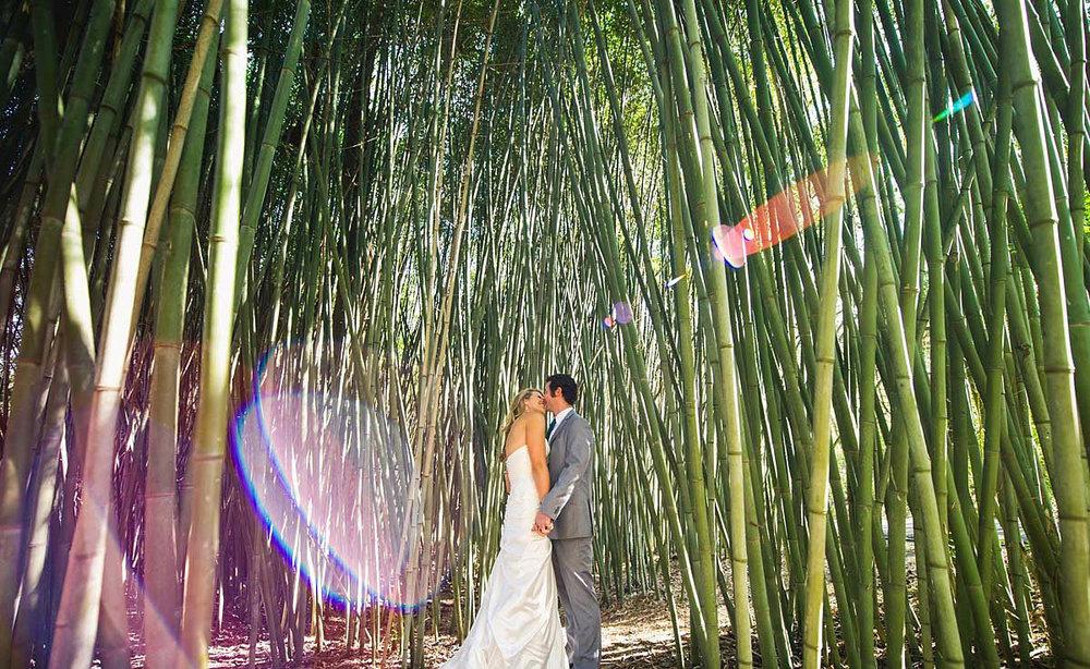 Telluride-wedding-3.jpg