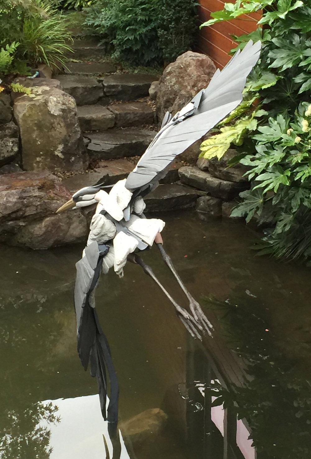 heron4.jpg