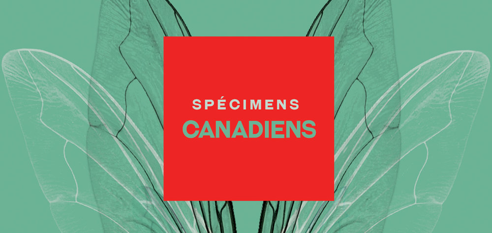 specimens canadiens.jpg
