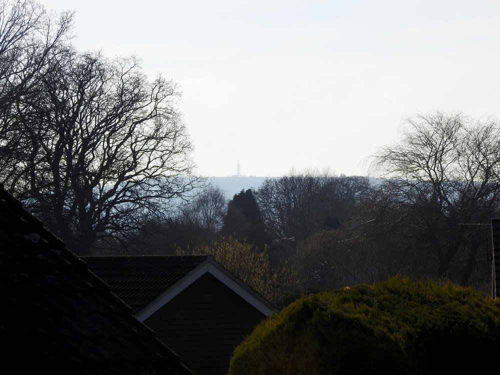 The view of Butser Hill from our garden