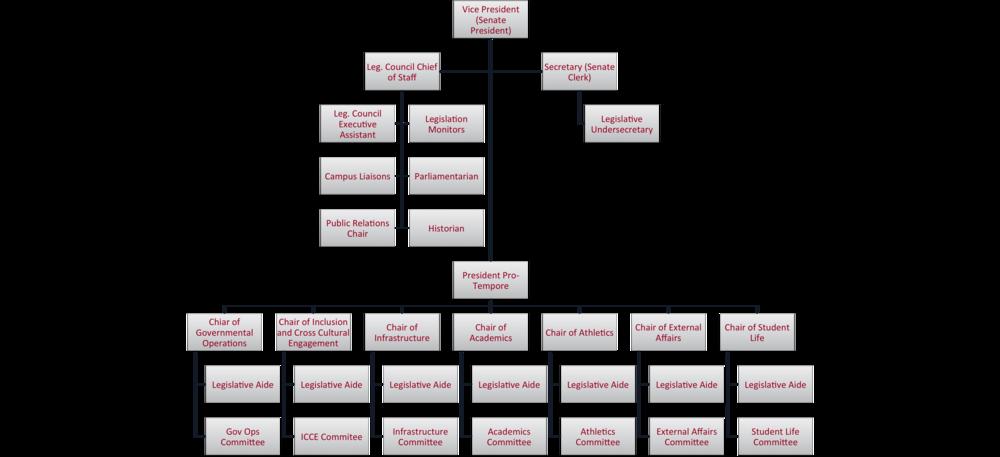 Senate Organization Structure Elam.png
