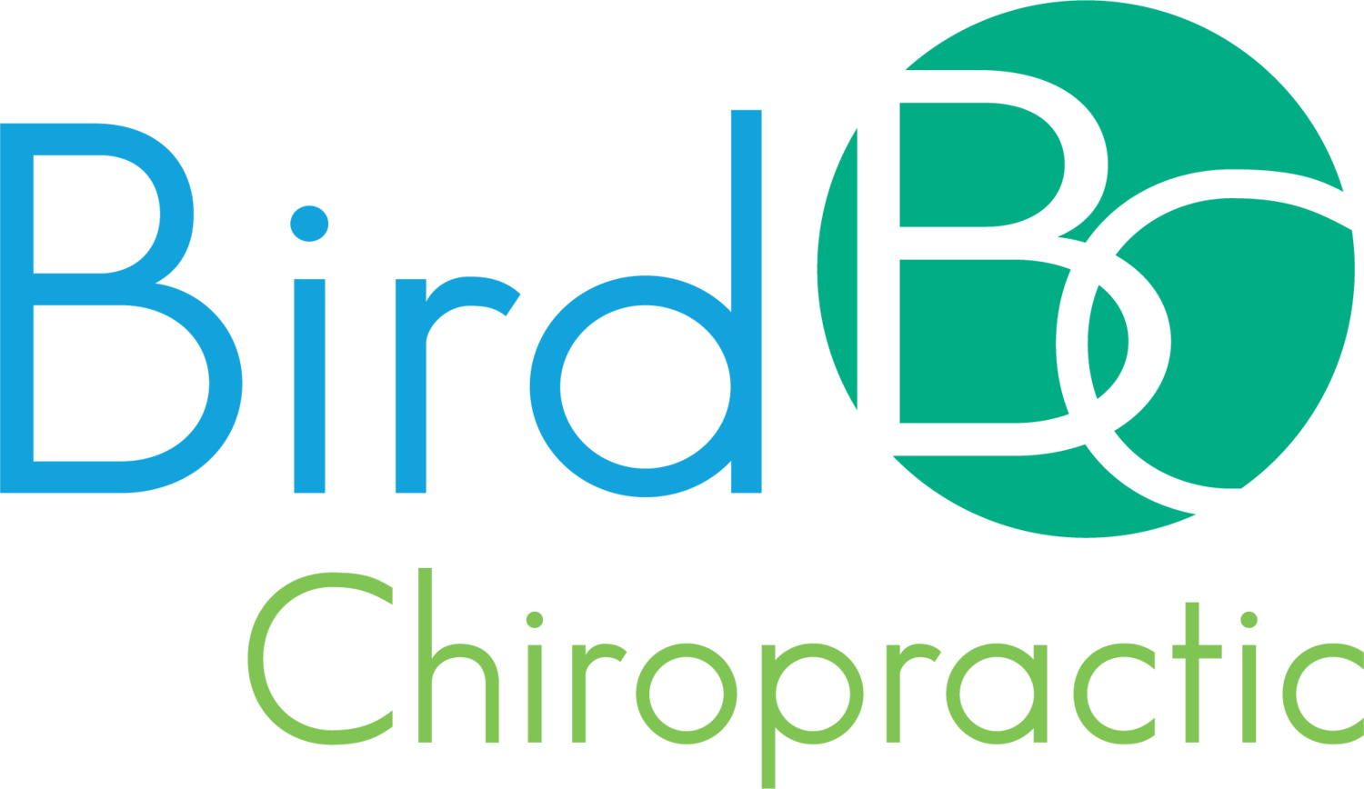 Bird Chiropractic - Best Local Voorhees Township Chiropractor