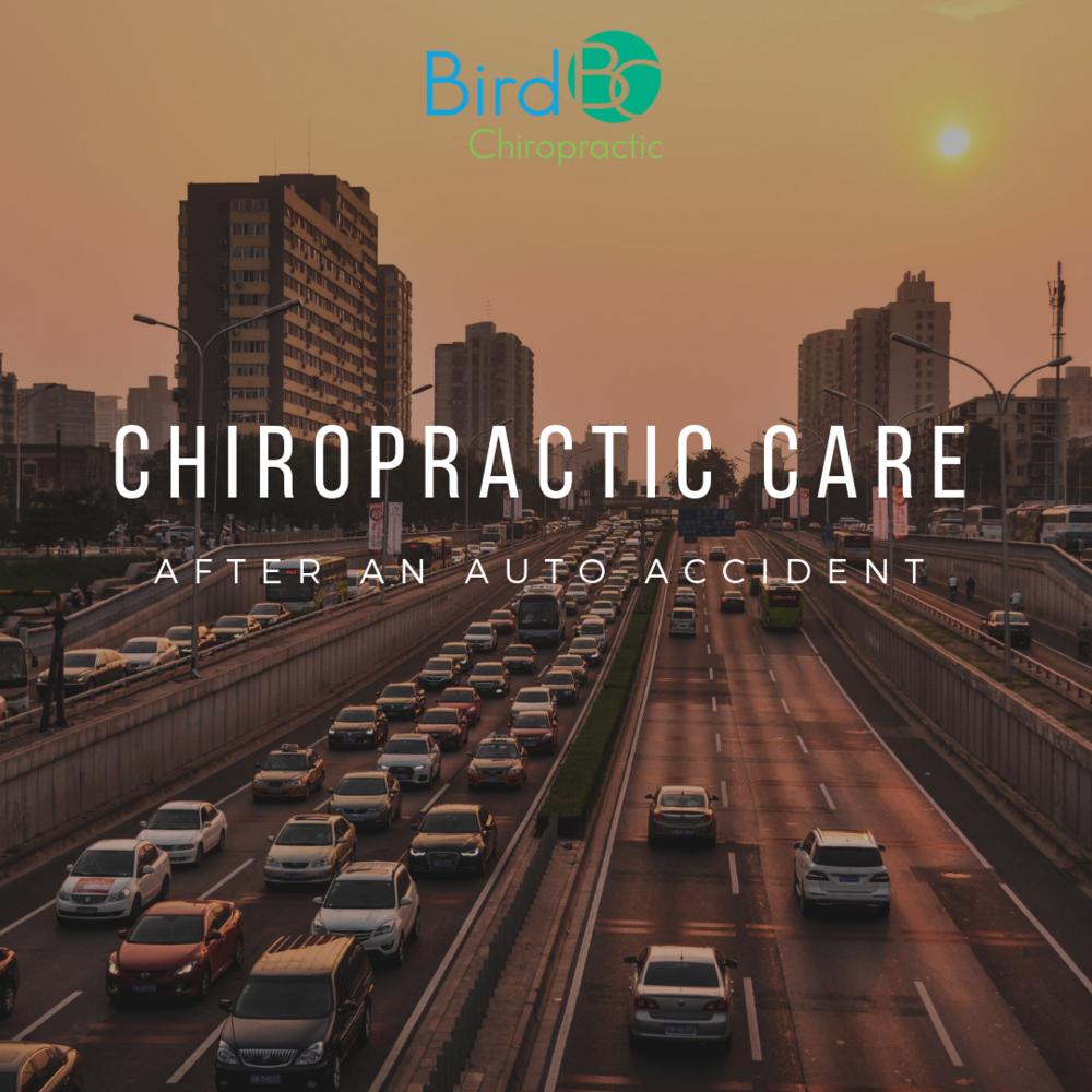 bird-chiropractic-auto-accident.png