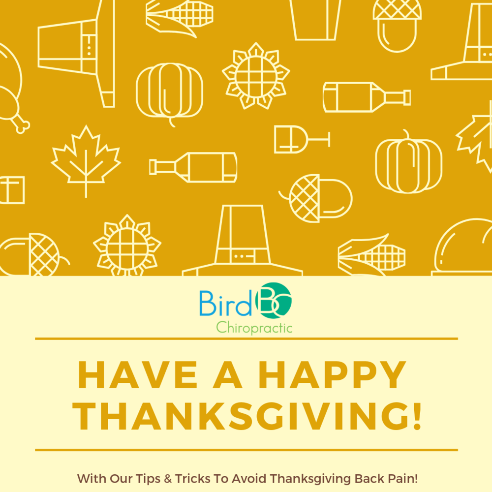 bird-chiropractic-thanksgiving.png