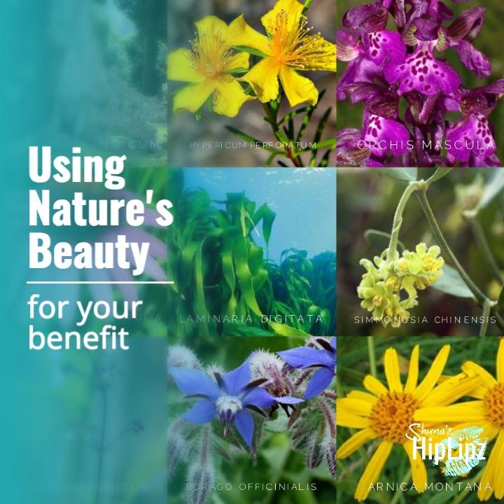 Using Nature's Beauty.jpg