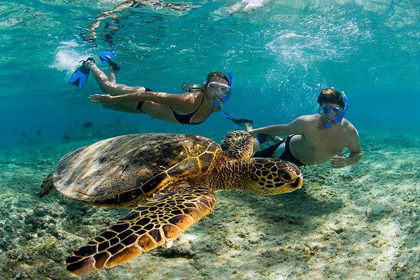 Kahaluu-Beach-Park-Kona-Hawaii-Central-Pacific-Ocean-2[1].jpg