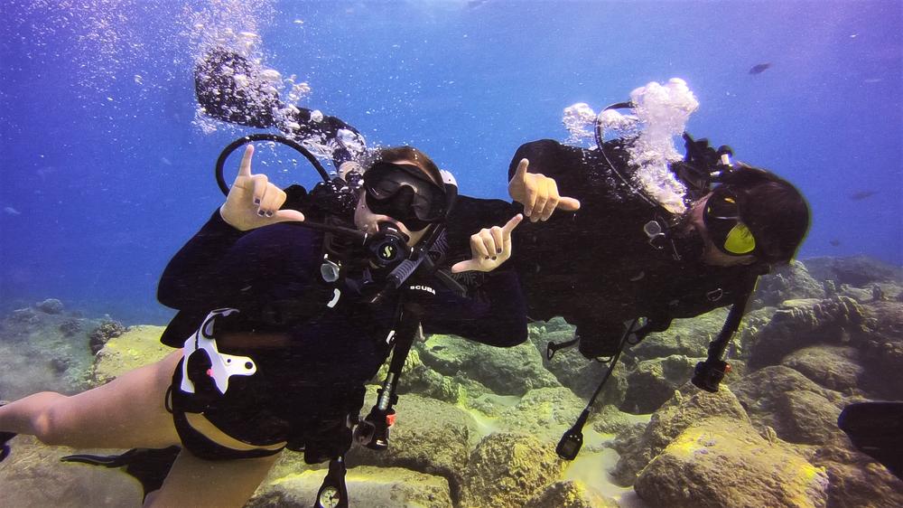 - Padi Open Water Diver