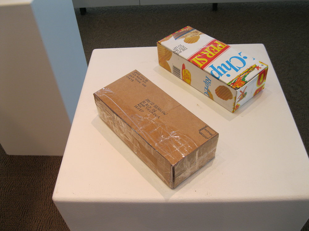 "Archival Structure 5: Bricks (Example Bricks) Conserved paperboard and PVC plastic packaging, detritus and ephemera, 2.5 x 9 x 4.5"". 2009."