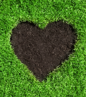 Image of heart cut out of green lawn to illustrate Turf Preserve standard lawn care services.