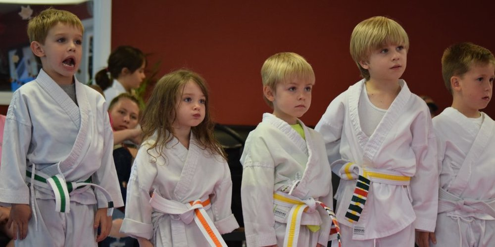 Gainesville Taekwondo Classes Build Up Intellectually Disabled Children - WUFT News
