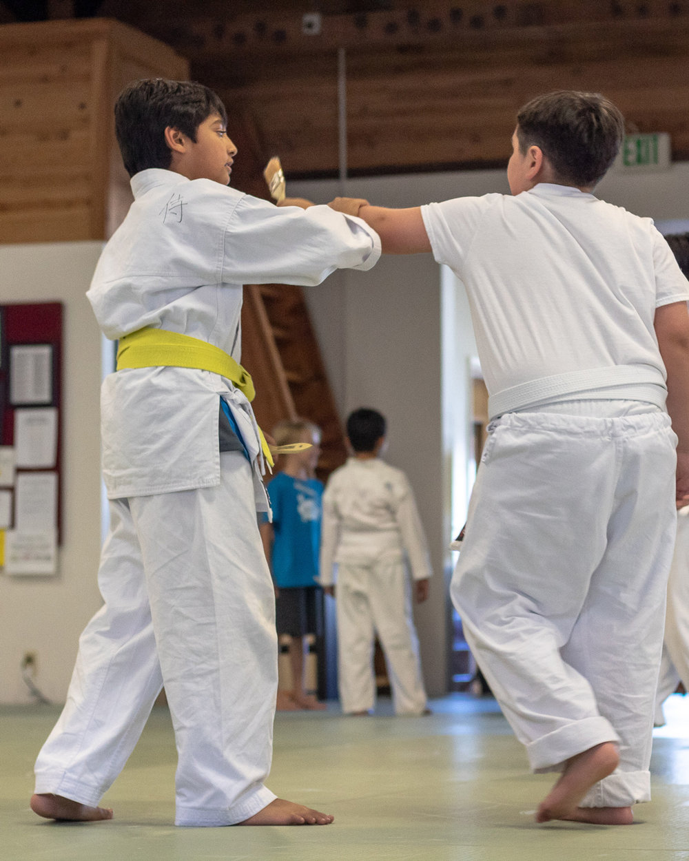 YOUTH CLASS - Our intention with our youth students (ages 7 to 11) is to develop powerful dynamos who learn self-defense and the art of aikido.Youth students are taught how to avoid being bullied while not becoming a bully. They adopt the perspective of a peaceful warrior – to become a strong, centered person who can choose from many options to deal with the aggressive pervasive in their world and today's society. This can only be learned through hands-on experiential training. We welcome you to contact us and set up an appointment.