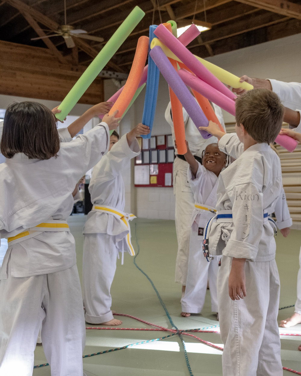 SUPERHERO - Children ages 4 to 6 are welcome to participate in our superhero class. Our goal is for them to learn how to relate to others. They learn how to work together and be part of a group as they begin to understand the basic principles of aikido. The best way for your child to understand aikido and our superhero class is for you to bring them to one of our classes. This way, you can both observe a class. Contact us today to set up an appointment.