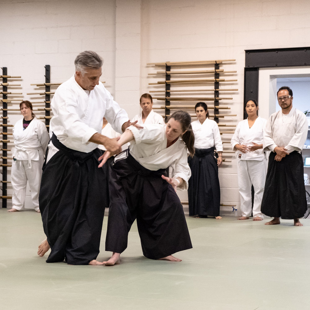 SELF DEFENSE - Let Aikido of Reno show you how to use your survival energy. In doing so you will learn about yourself, and you go from the