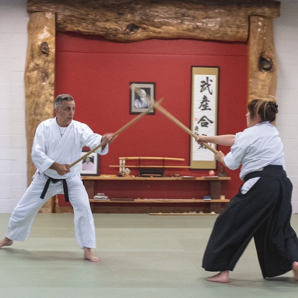 ENERGY CLASSES - Everything you do in life requires energy, as you already know there are two basic types, positive and negative. At Aikido of Reno, we focus on positive, creative energy! You will learn subtle energy and dynamic energy. Visit our Events page to find a class today.